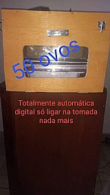 Chocadeira 50 ovos automatica digital
