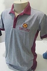 Camiseta polo duas cores