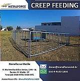Creep feeding e porteiras de aco
