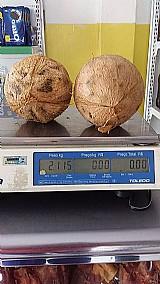 Venda coco seco e verde