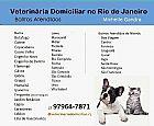 Veterinaria domiciliar - cães e gatos - rio de janeiro