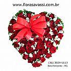 Nova lima mg condominios nova lima flores flora flor mg
