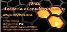 Fenix assessoria e consultoria mitauy