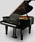 Afinador de pianos rj 35 anos de tradição em pianos