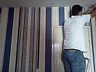 Vendedor e instalador de papeis de parede