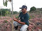 Compensacao ambiental  em guarulhos zap 11-98621-3420