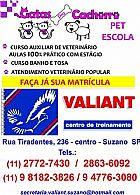 Cursos livres de auxiliar veterinario e banho e tosa