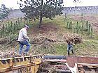 Limpeza de terreno em guarulhos