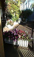 Kasagardemlondrina - jardinagem e paisagismo