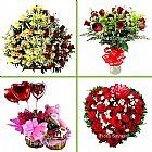 Betim mg floriculturas arranjos de flores, cesta cafe coroas