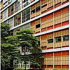 Manutencao de janelas ideal em pinheiro