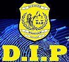 Dip investigacoes particular
