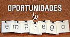 Divulgador(a) online