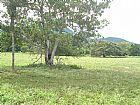 5.150 ha  aquidauana