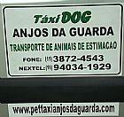Taxi dog anjos da guarda transporte de animais de estimacao