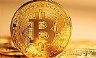 Ganhe 25,6 bitcoins com qpenas 0,002 btc de investimento