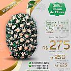 Coroa de flores 24 horas