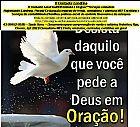 Influenciadores de londrina, pr - brasil   sanferbryts.com