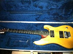 Guitarra Washburn N4 com case