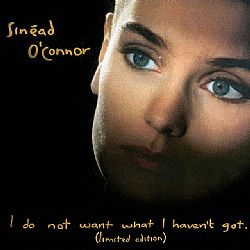 CD Sinead O Connor - I Do Not Want What I Havent Got - CD Duplo