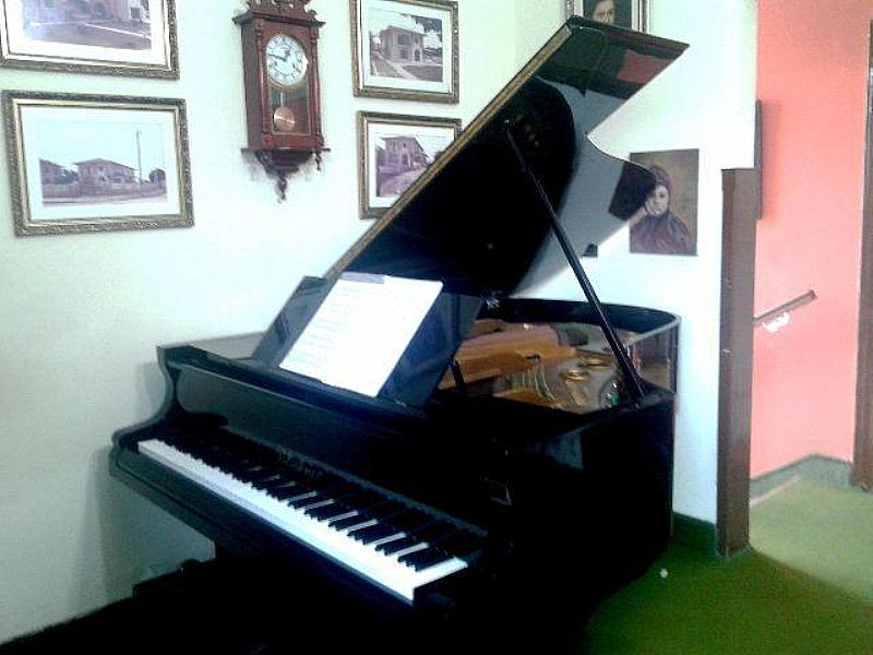 Piano Alemao bluthner