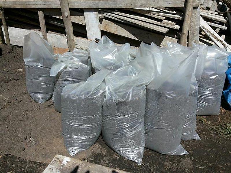 Terra para jardim com entrega gratis saco de 15kg