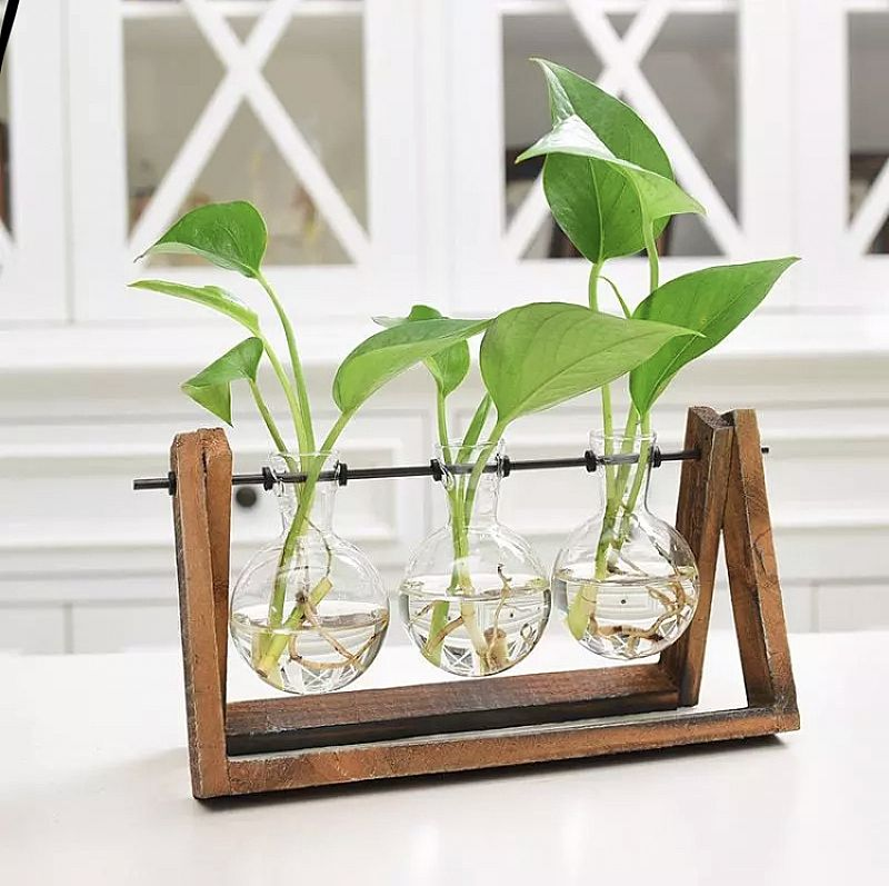 Jarro de vidro parede plantadores plantadores de vasos de plantas de ar parede planta recipiente vaso casa acessorios de decoracao de parede-montado