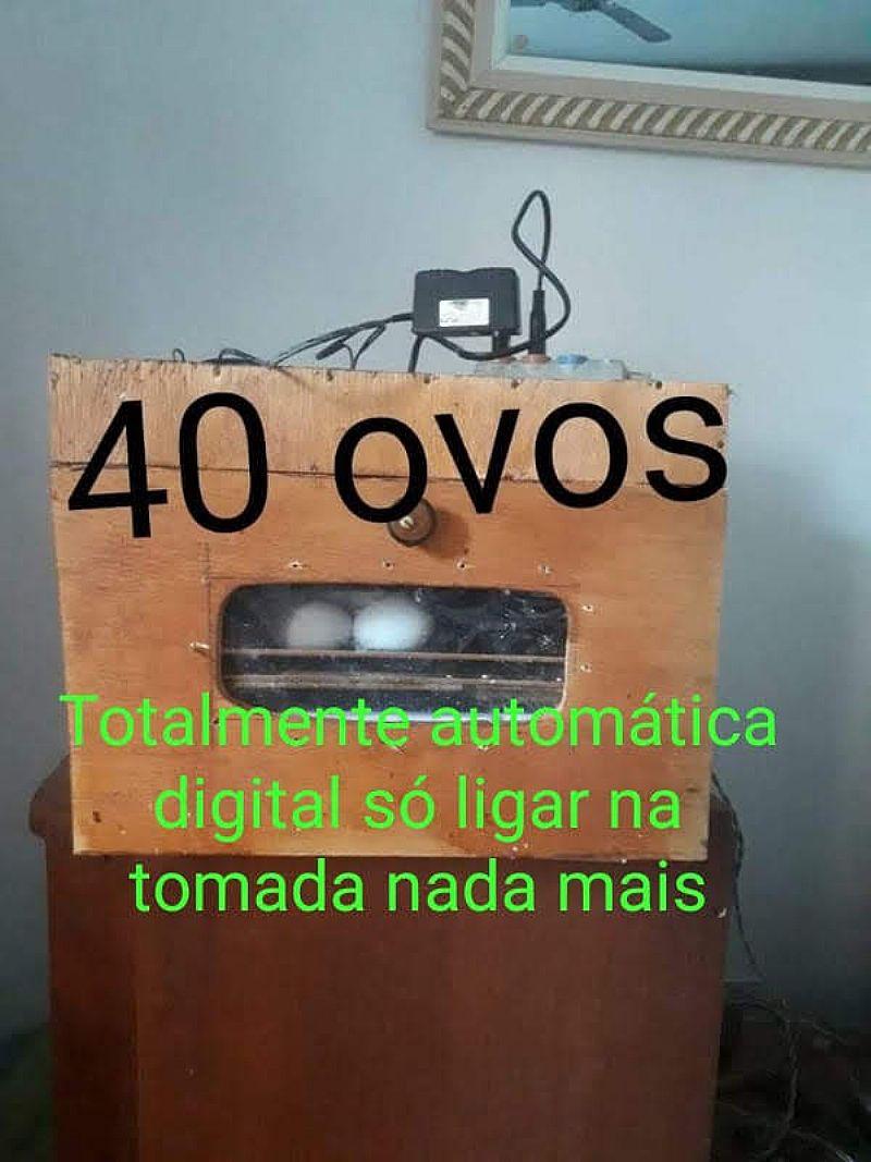 Chocadeira 40 ovos digital automatica digital rj