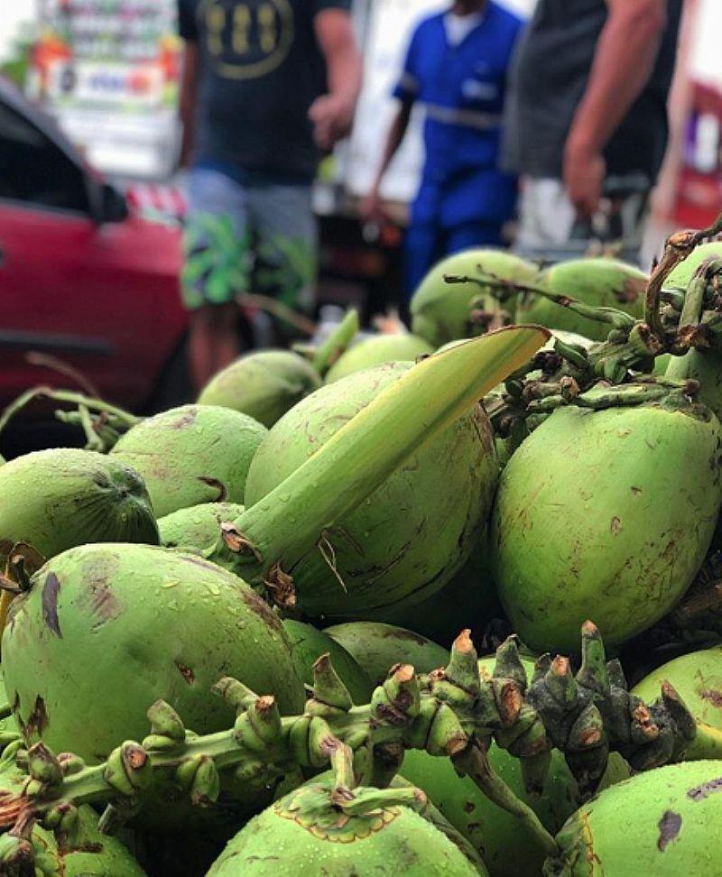 Distribuidora de coco verde no guaruja