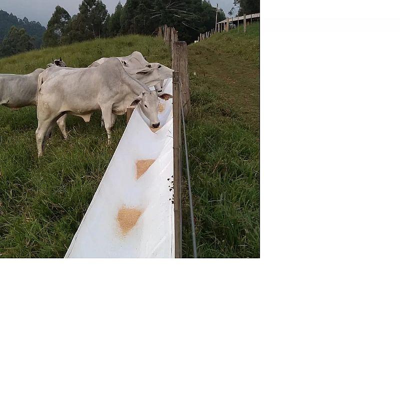 Cocho para Bois e Vacas big bag 1x5mt 220gm       marca alfabag     modelo 220gm/1, 00mt larg