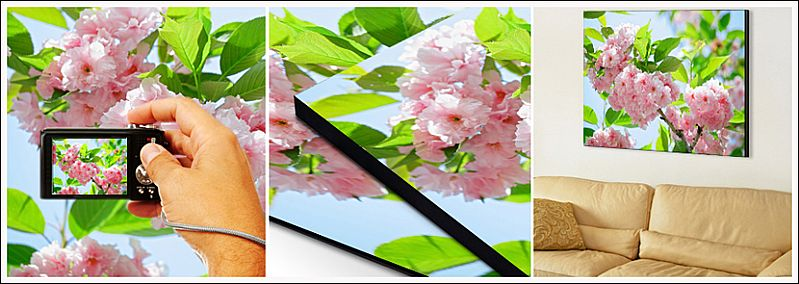 Adicione Bordas e Molduras Personalizadas às Suas Fotos