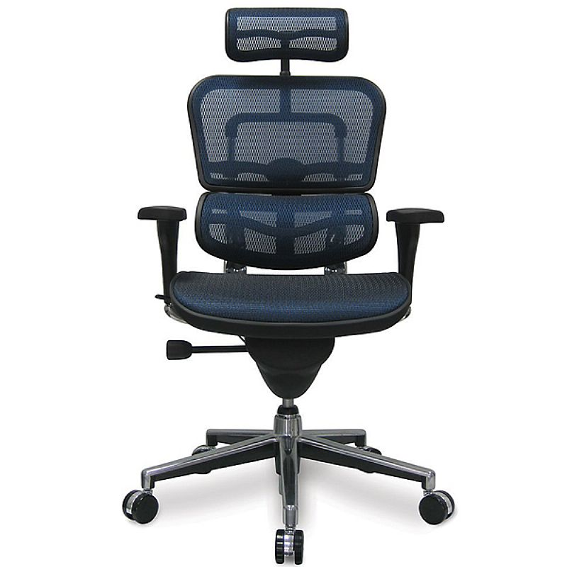 Cadeira raynor ergohuman presidente nr17