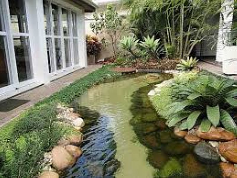 paisagismo & desing em jardins