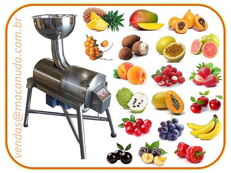 Despolpadeira de frutas Haubermaschinen