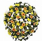 Floricultura Alto de Pinheiros (11) 3495-7555