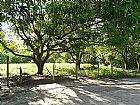 Sitios em cachoeiras de macac� 3623-2297