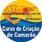 CURSO DE CULTIVO DE CAMAR�ES