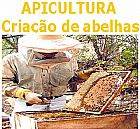 CURSO DE CRIA��O DE ABELHA