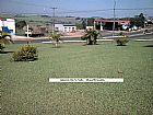 Grama Batatais proprias para gramado