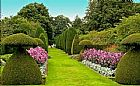 Paisagismo,  jardinagem,  jardins,  gramas,  plantas ornamentais,  62-85701915
