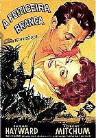 Filmes Dificeis,  Raros,  Classicos