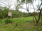 Caetano imoveis-3623-2297 terreno a 600mts da rj 116 com rio na divisa