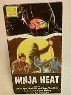 Filme Ninja heat dublagem