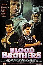 Irmaos kickboxers dublagem classica imagem dvd importado!