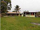 Sitio com quase 18.000m2 100% plano em agro-brasil caetano im�veis 3623-2297