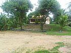Sitio em agro-brasil por r$ 220.000, 00 caetano im�veis 3623- 2297
