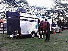 Trailler para cavalos