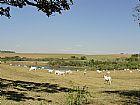 Fazenda a venda em Bauru/SP - 482 alqs