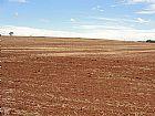 Fazenda a venda em Avare/SP - 165 alqs