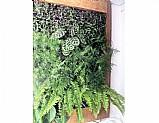 Jardim vertical irrigado